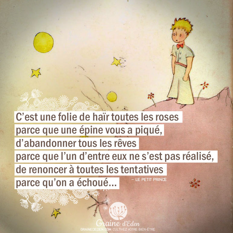 Citation le petit prince