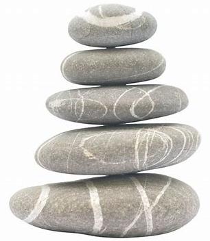 Zen organisation